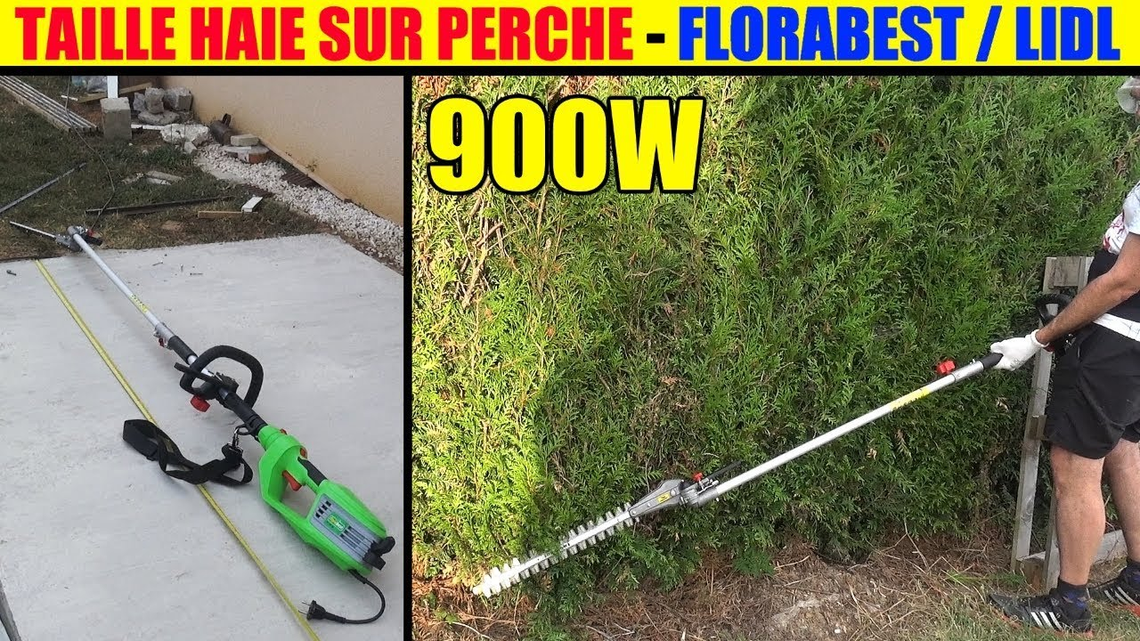 Taille haie lidl