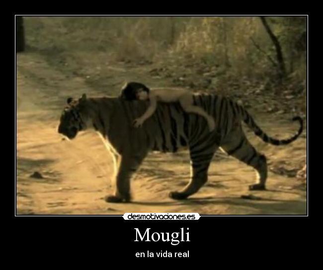 Mougli