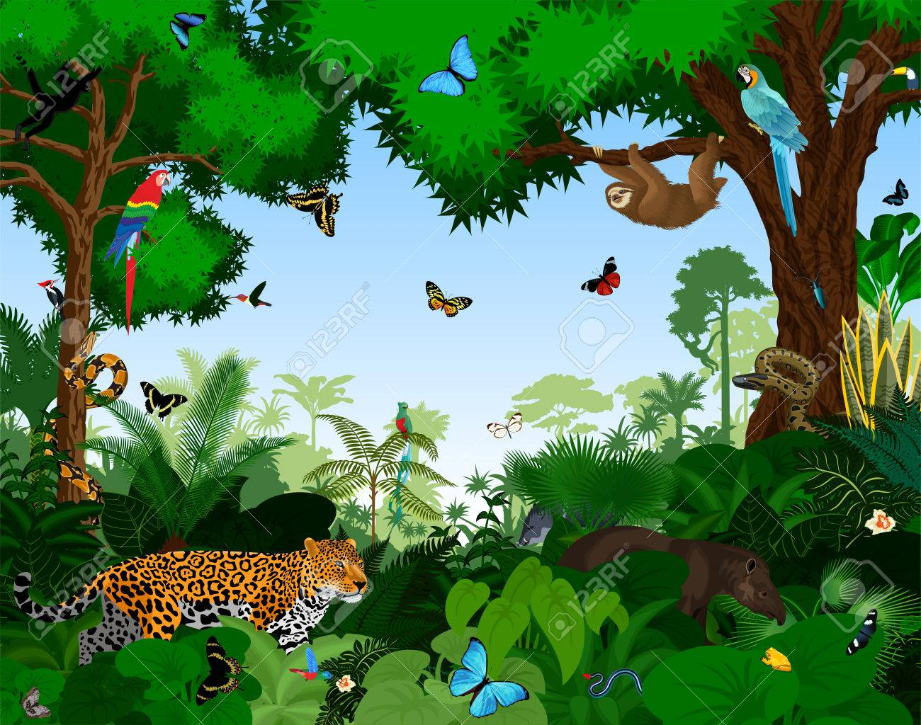 Photo de la jungle avec animaux
