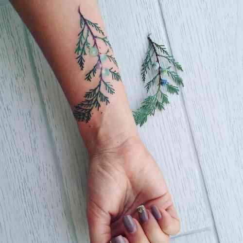 Idée tatouage bras femme